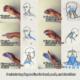 Automassaggio cervicale ginnastica dolce biosomatica lodi